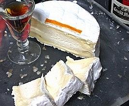 チーズ基礎講座